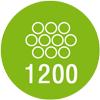 Количество пружин в двуспальном матрасе: - 1200шт.